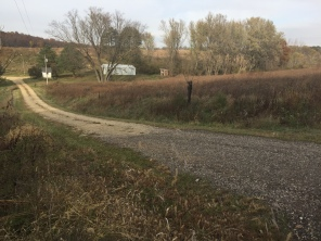 Driveway into the Friends' Prairie and Field Station