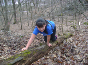 A girl crossing a creek by crawling on a big log stretching from one bank to the other