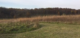 Intersection of 2 trails - one up from the field station and the other that circles the prairie